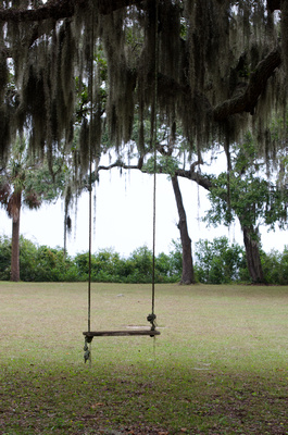 """""""Glimpses of Hope"""" - Coffin Point Plantation"""